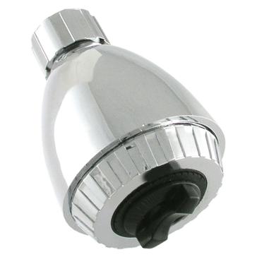 Exquisite 2-Function Shower Head