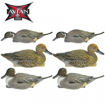 Avian-X Topflight Pintail Decoys 6 Pack AVX8082