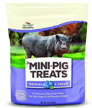Manna Pro Mini Pig Treats Berry & Cream 4 Pound Bag