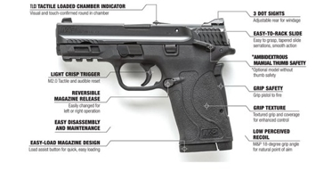 Smith & Wesson M&P380 SHIELD EZ .380ACP Semi-Auto Pistol