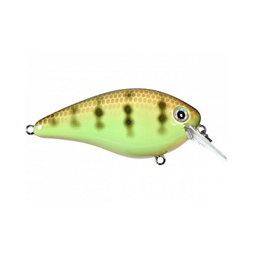 Strike King KVD Square Bill 1.0 3/8oz Chartreuse Perch Crankbait