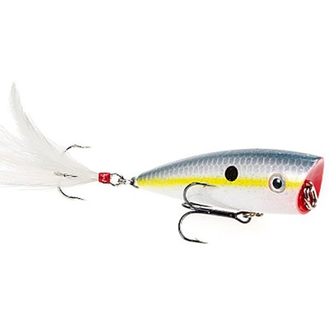 Strike King KVD Splash Sexy Shad Topwater Popper