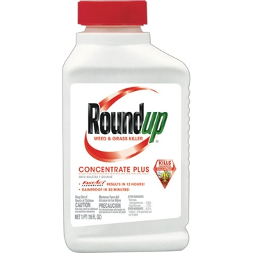 Roundup Weed & Grass Killer Concentrate Plus 16oz
