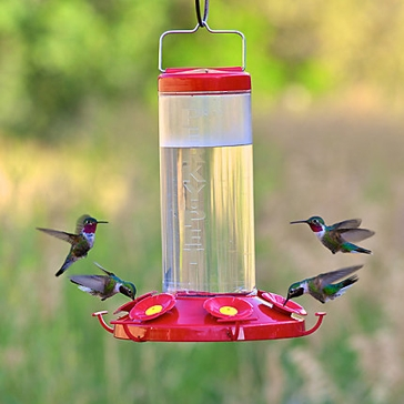 Perky-Pet Grand Master Plastic Hummingbird Feeder - 48 oz Nectar Capacity