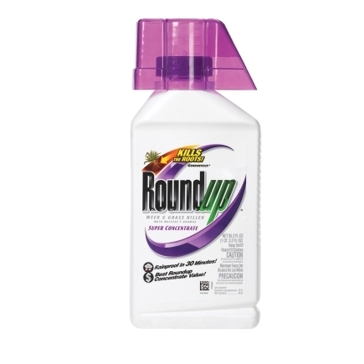 Roundup Concentrate 35.2oz Weed & Grass Killer