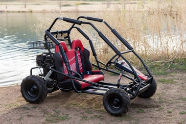Coleman KT-196 Two Seat Go Kart