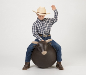 Big Country Bouncy Bull Ride On