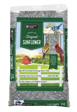 Striped Sunflower 4lb