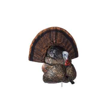 Flextone Thunder Creeper Strut Turkey Decoy