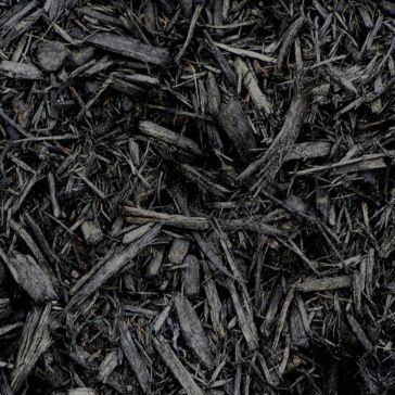 Pine Mulch Radiant Black Color