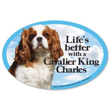 Prismatix  Lifes Better With A Cavalier King Charles Spinal Magnet