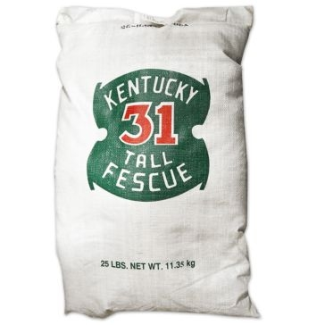 Kentucky 31 Tall Fescue Grass Seed 25lb