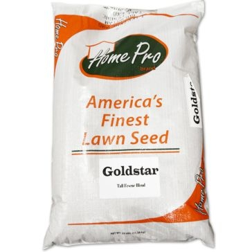 Lifetyme Pro Goldstar Fall Fescue Blend Grass Seed 25lb