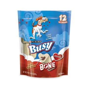 Purina Busy Bone Mini Dog Chews - 21oz