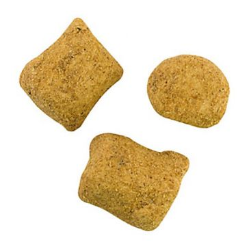 Berkley PowerBait Catfish Bait Chunks 6oz Cut Shad
