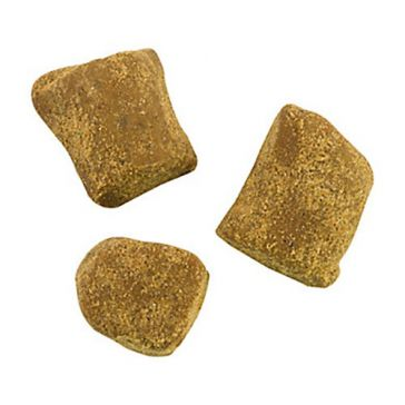Berkley PowerBait Catfish Bait Chunks 6oz Chicken Liver
