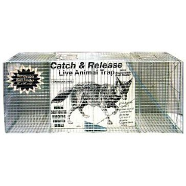 Coyote Live Animal Trap 17x25x55