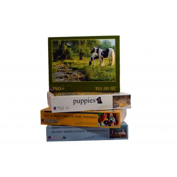 Adult Assorted Puzzles