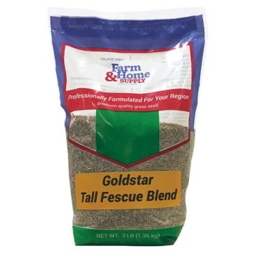 Lifetyme Pro Goldstar Tall Fescue Blend Grass Seed 3lb
