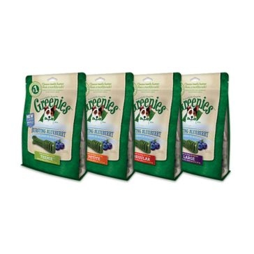Greenies Bursting Blueberry Dental Chews Dog Treats 12oz