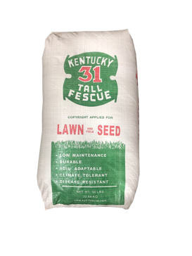 Kentucky 31 Tall Fescue Grass Seed 50lb