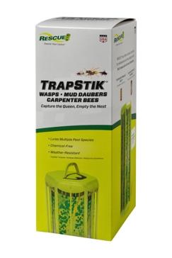 Sterling International Trapstik for Flies Bulk Box