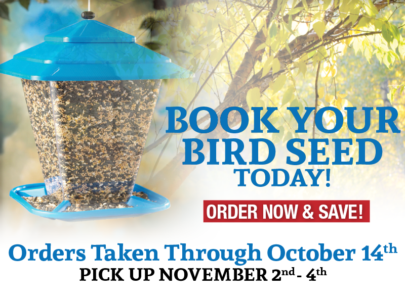 Book Your Bird Seed