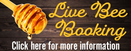 Live Bee Booking
