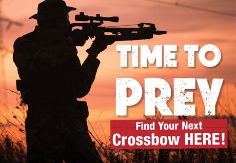 Crossbow Sale