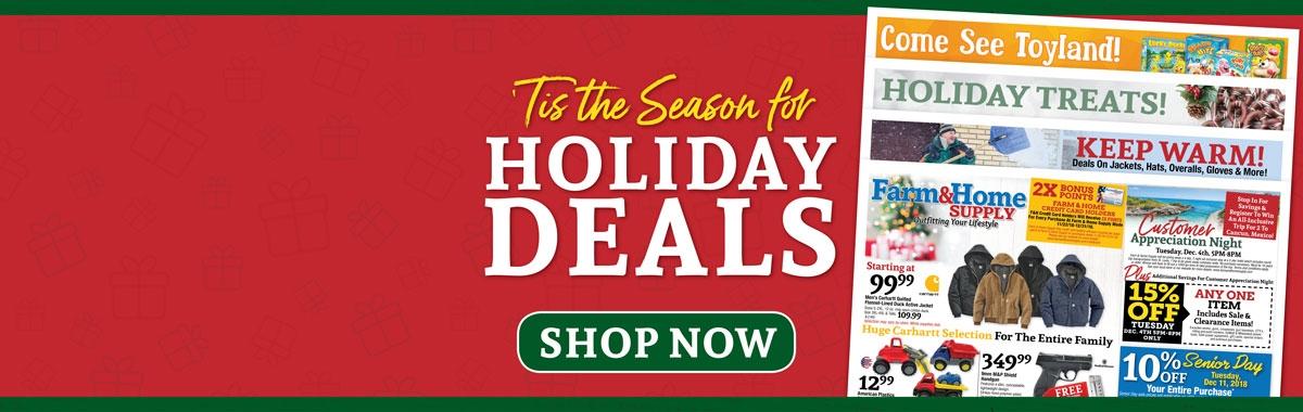 Holiday Ad 1